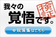 兵庫県議団自民党政策集(検証)